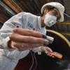 Ростехнадзор отменяет перегруппировку опасных производственных объектов